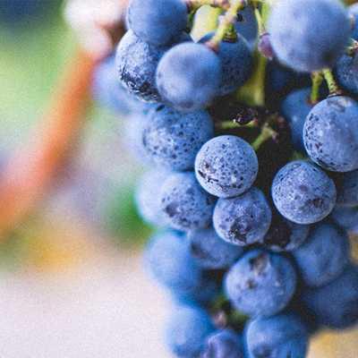 Αρωματικό Χώρου Grapes