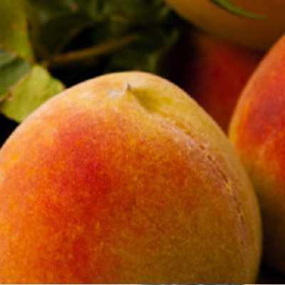 Αρωματικό Χώρου Peach